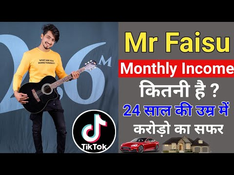 Team 07 Mr Faisu Tik Tok Income And Other Earnings
