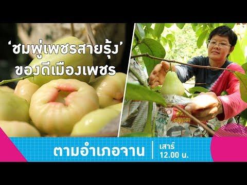 """เข้าครัวทำ """"น้ำปลาหวาน-ยำหัวปลี' เมนูเด็ดเมืองเพชรบุรี - วันที่ 07 Apr 2018"""
