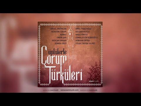 Emel Tascioğlu - Halimi Arzettim Dağlara Taşa - Official Audio