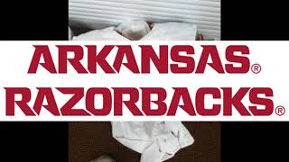 The Mandela Effect Part 144 (Arkansas Razorbacks logo)
