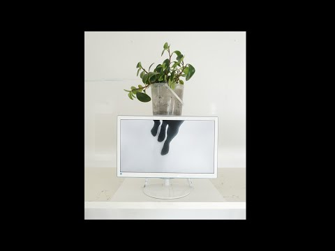Ariane Müller, Martin Ebner, Untitled (It), Mixed Media (Video Loop)