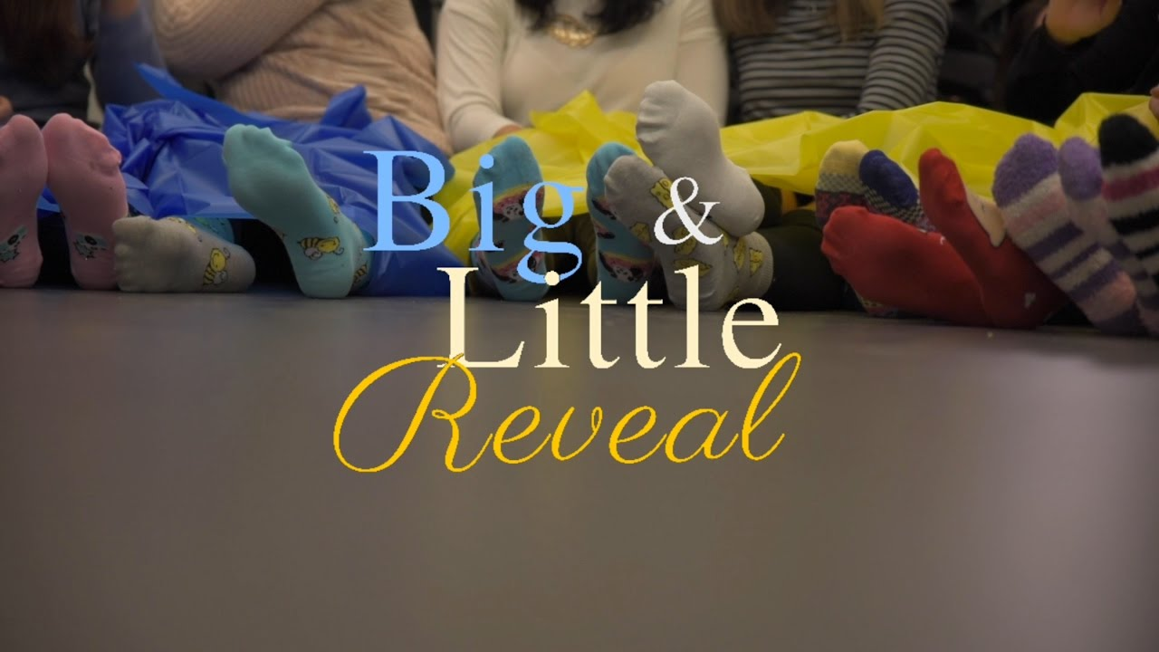 BIG & LITTLE REVEAL
