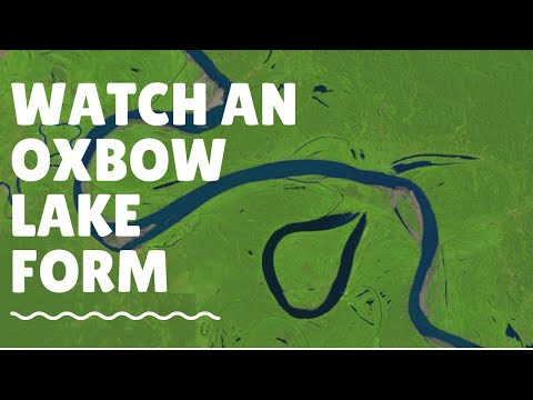 Watch An Oxbow Lake Form: Ucayali River: 1985 - 2013