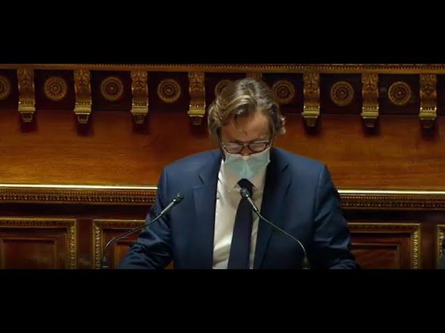 Emmanuel CAPUS : PLF 2021 - Discussion générale