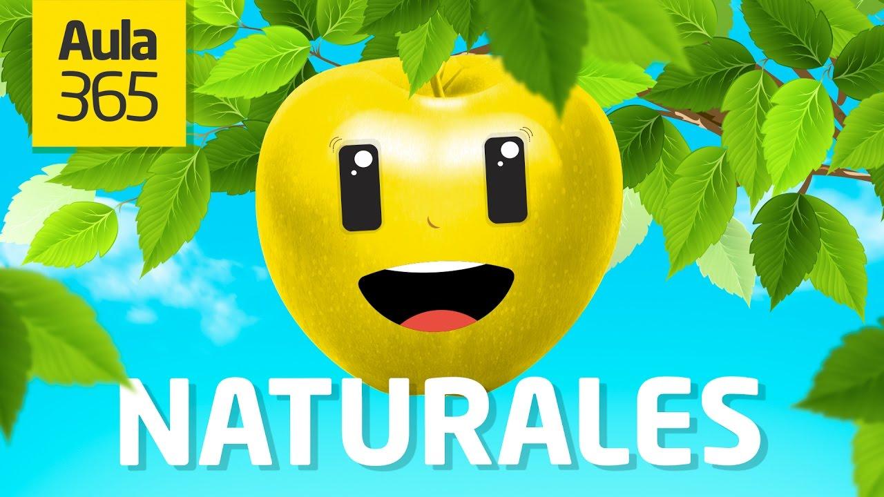 Cu nto sabes de ciencias naturales aula365 videos - Aromatizantes naturales para la casa ...