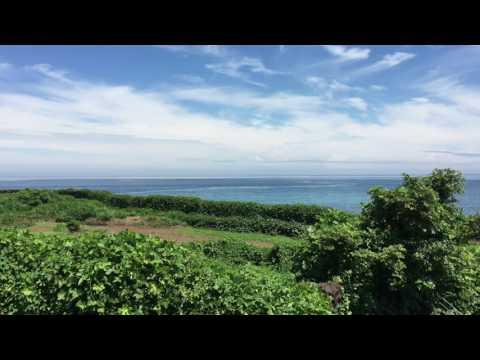 Island Meditation