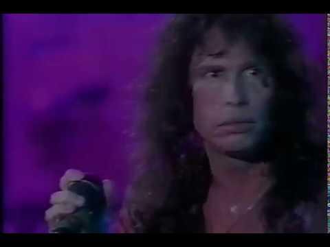 AEROSMITH - Live Rio De Janeiro 1994 (Full)