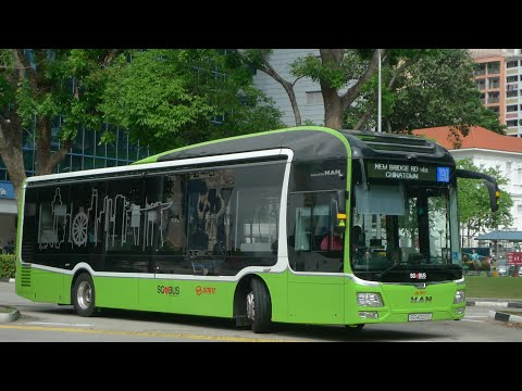 SMRT Bus Service 190, SG4002G (Full Trip) (Direction 1)