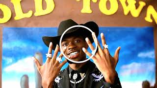 Lil Nas X - Old Town Road ft. Billy Ray Cyrus (Bass Boosted)