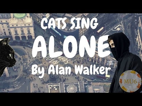 Cats Sing Alone by Alan Walker | Cats Singing Song