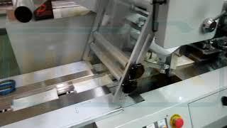 口罩包裝機 Mask Packaging in Horizontal Flow Wrapper