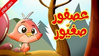 عصفور صغيور (بدون إيقاع)  - طيور بيبي  Toyor Baby