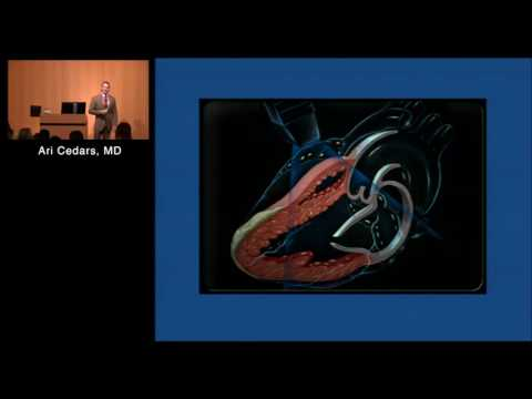 Pulmonary Arterial Hypertension: What Does It Mean for ACHD patients?