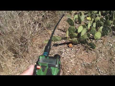 PARC Palomar Amateur Radio Club Transmitter Hunt