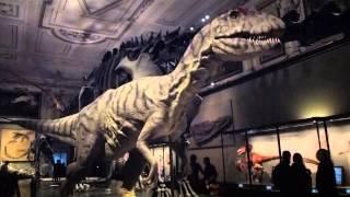Dinosaurier-Ausstellung / Naturhistorisches Museum / Wien