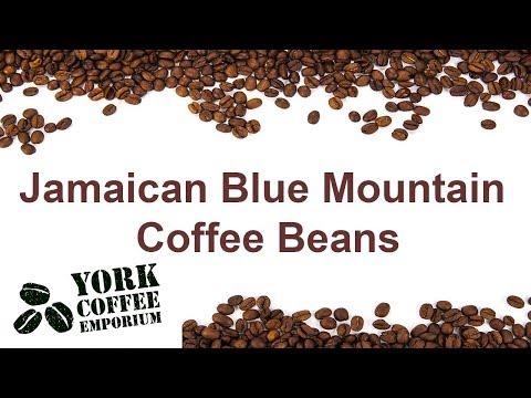 Coffee Merchant, London | HRHiggins (Coffee-man) Ltd from YouTube · Duration:  3 minutes 7 seconds