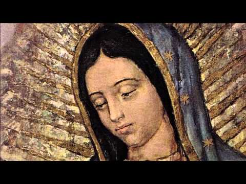 NCEA Video Resource: Our Lady of Guadalupe