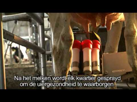 Lely Astronaut A4 - Product development (Dutch)