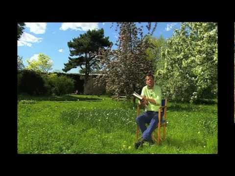 natur im garten naherholung mit mehrwert 6 youtube. Black Bedroom Furniture Sets. Home Design Ideas