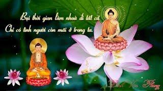 Nhạc Phật Giáo - Nhạc niệm phật - Nhạc Thiền Tịnh Tâm An Lạc