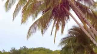 A Glance of Panama