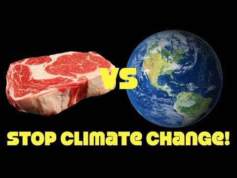 Climate Catastrophe By 2030! Why Won't People Stop Eating Meat?