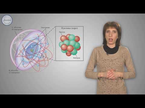 Новости науки на «Элементах»: биология, физика, химия
