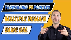 SEO: Forwarding Vs Pointing Multiple Domain Names to Same URL