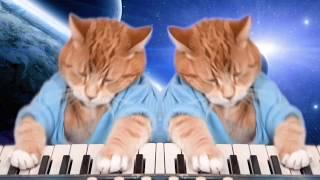 Keyboard Cat Duet?