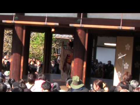 Setsubun at the Kitano Tenman-gū (北野天満宮) in Kyoto!