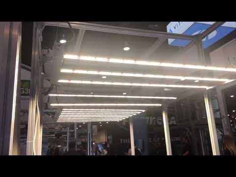 New Gavita LED 650W - THE LEDGARDENER COM FORUM