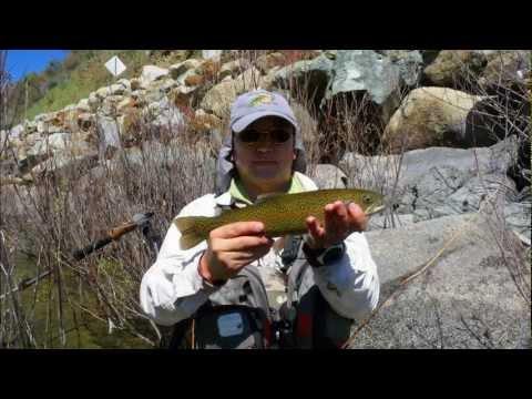 Fly fishing Merced river and hiking Hite cove trail 2012