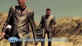 De Swingers - What I Like About You