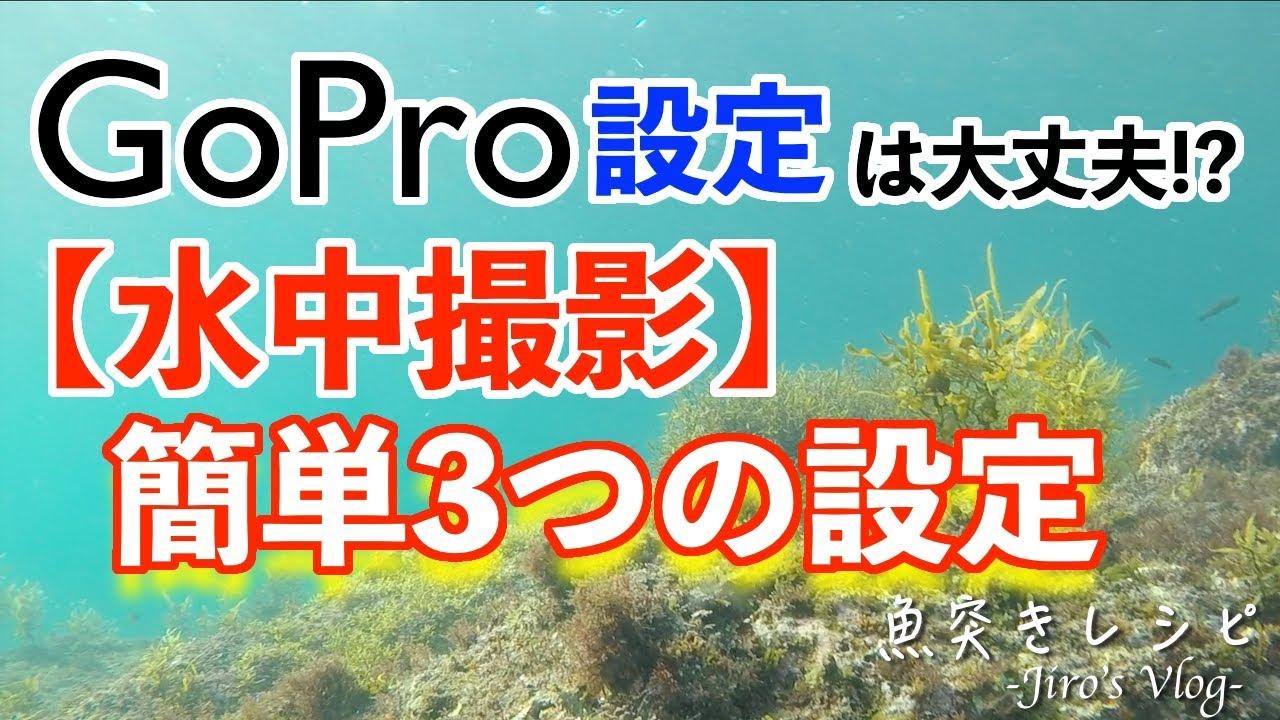 【水中撮影】GoProの設定は大丈夫!?簡単な3つの設定!!買った方が良いアイテム!!!!!魚突き