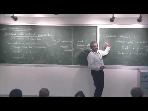 Subir  Sachdev - The SYK models of strange metals and black holes