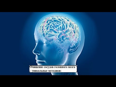 Чистка сосудов головного мозга лавровым листом отзывы