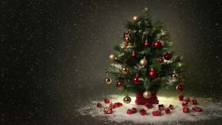 Chúa Xuống Làm Người | Nhạc Thánh Ca | Nhạc Noel