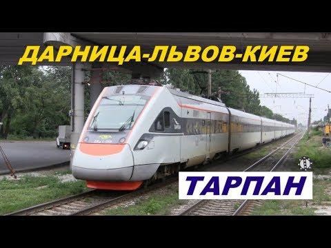 "Поезд ""Тарпан"" Дарница-Киев-Львов"