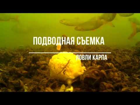 Подводная съемка ловли