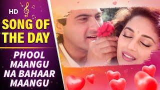 Rose Day Special Song - Phool Mangoo Naa Bahaar | Raja (1995) | Madhuri Dixit | Sanjay Kapoor | 90s