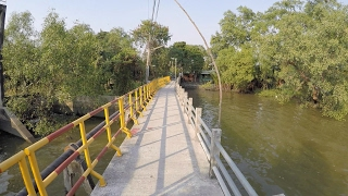 Day Trip to Bang Krachao (All Highlights)