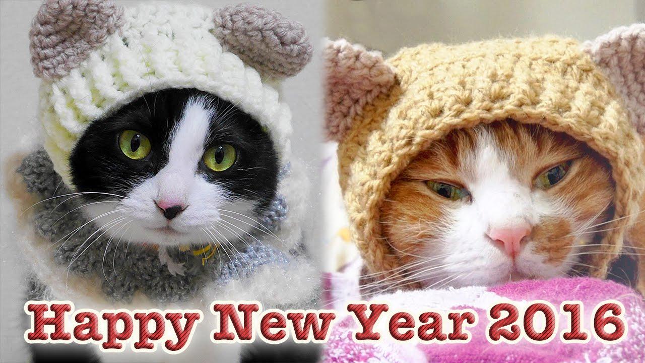 happy new year japanese