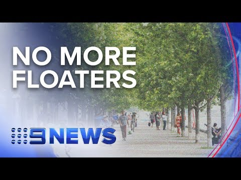 End in sight for debilitating eye condition   Nine News Australia