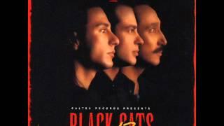 Black Cats  - Baraye Hamisheh | بلک کتس - برای همیشه