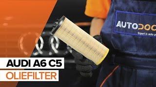 Achteras Rubbers monteren AUDI A6 Avant (4B5, C5): gratis video