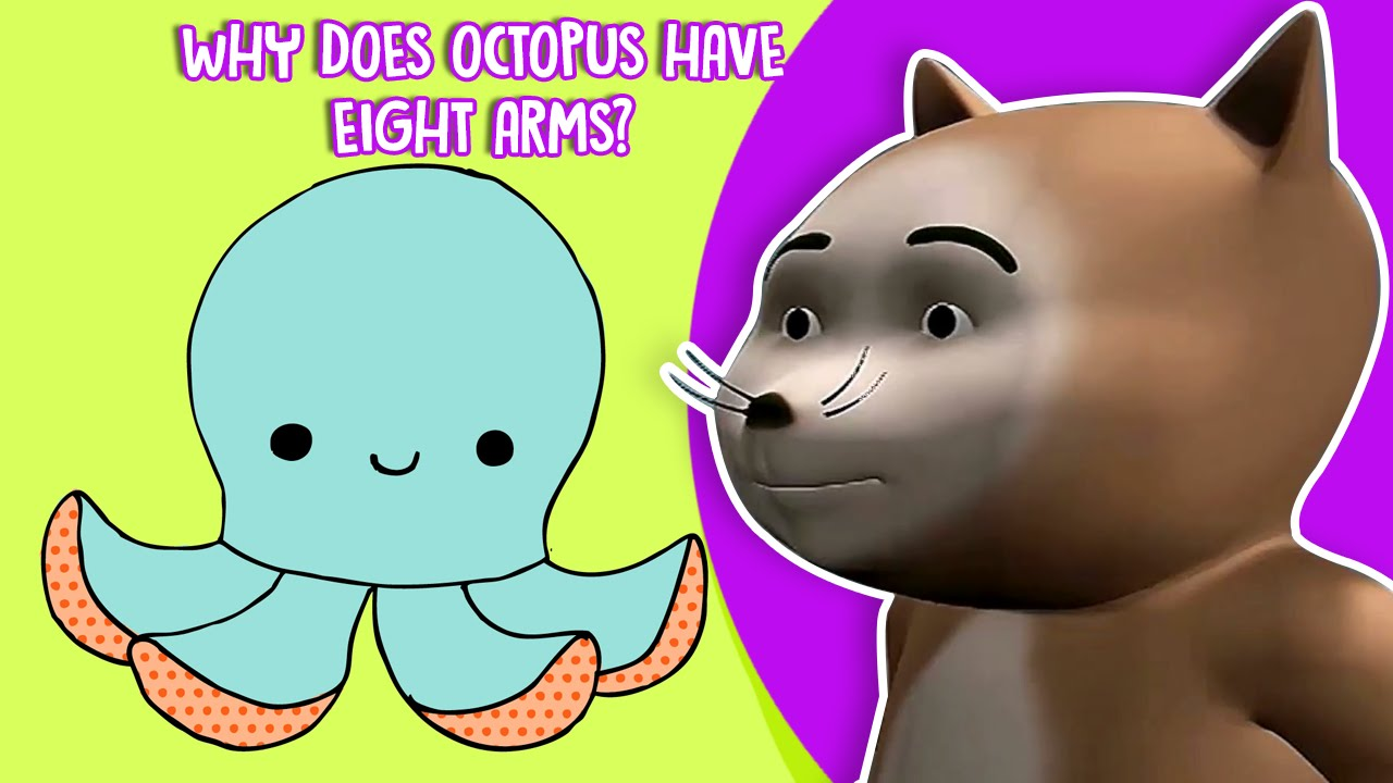 why does an octopus have 8 legs science facts about octopus for