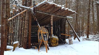 WINTER Primitive Shelter BUILD in the Forest! | Natural Materials, Axe, Saw, Tarp, Rope