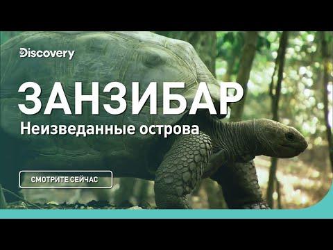 Занзибар | Неизведанные острова | Discovery Channel - Видео онлайн
