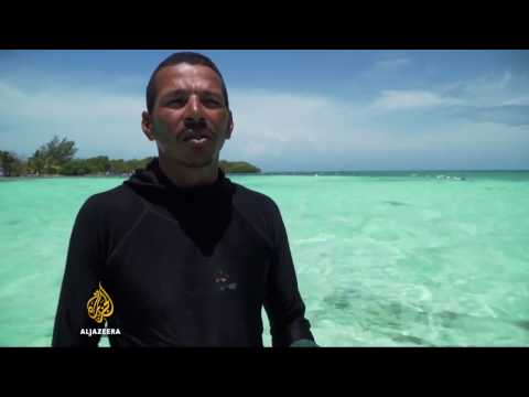 Belize: Villagers farming seaweed to prevent over fishing