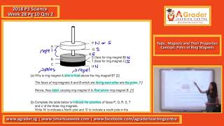 2018 - P3 Science - Week 28 - Topic - Magnets and Their Properties (Poles of Ring Magnets)